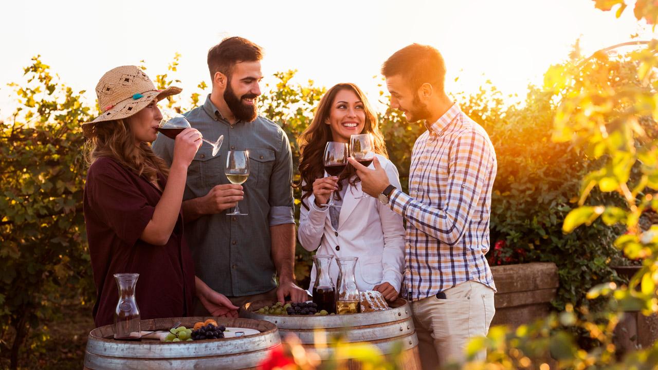 Amigos e Vinho